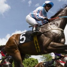 What is the best horse betting strategy?